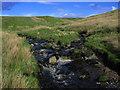 NS2562 : Middlemoss Hill by wfmillar