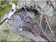 SK1482 : Entrance to Peak Cavern by Chris Gunns