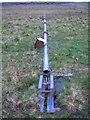 NS2564 : Fallen Mast by wfmillar