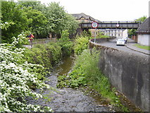 NS4075 : Stream flowing to the Clyde by Stephen Sweeney