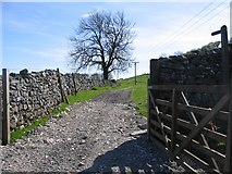 SD8167 : Footpath from Little Stainforth by John S Turner