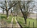 SO1754 : Track, Blaen-heath by Richard Webb