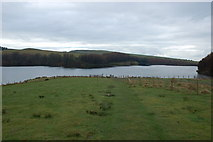 SJ9775 : Lamaload Reservoir by Mark Critchley