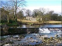 SE0063 : River Wharfe Weir from Linton Falls Bridge by Joe Regan