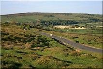 NZ7106 : Road Along Little Fryup Dale by Mick Garratt