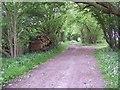 SU1013 : Leafy track near Daggans by Maigheach-gheal