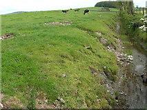NX7865 : Burn and farmland south of Dunjarg by John Whelan