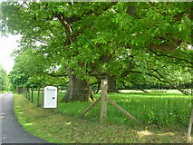 SX0371 : Pencarrow drive entrance by William Bartlett