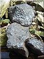 NY7928 : Black limestone, Kettlegrain Sike by Andrew Smith