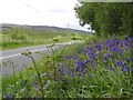 H0972 : Road at Ballymacavany by Kenneth  Allen