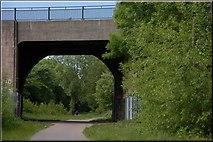 J3773 : Old railway bridge, Belfast by Albert Bridge