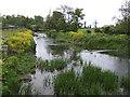 O0869 : River Nanny at Beaumont Bridge - downstream by Jonathan Billinger