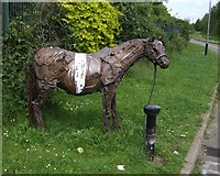 SO9596 : Tethered horse next to cycleway on 'The Lunt' by John M