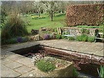 SO4465 : Walled Garden at Croft Castle by Trevor Rickard