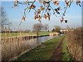 SO9364 : Worcester & Birmingham Canal near Astwood by Trevor Rickard