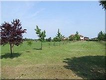 TL2155 : Southwood Farm by Jeff Tomlinson