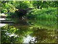 NS8594 : Cambus Iron Bridge by Lisa Jarvis
