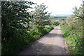 NU0027 : Lane on Weetwood Bank by Dave Dunford