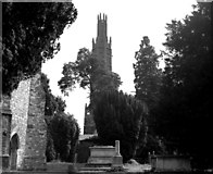 TQ6349 : May's Folly, Hadlow Castle, Kent by Dr Neil Clifton