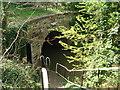 SO9160 : Northern entrance to Dunhampstead Tunnel by Trevor Rickard