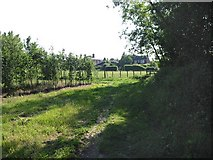 TR1859 : Looking W towards Fordwich on the Stour Valley Walk by Nick Smith
