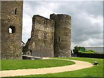 T0149 : Ferns Castle by liam murphy