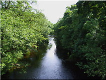 SK1984 : River Derwent Looking South from Yorkshire Bridge by Siobhan Brennan-Raymond
