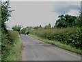 SO9172 : Lane to Woodcote Green by Trevor Rickard