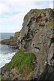 D0644 : Carrickarade Island by Anne Burgess