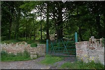 J4772 : A side entrance to Killynether Wood, Newtownards by Albert Bridge
