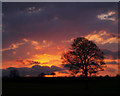 SE4105 : Tree at Sunset looking towards Edderthorpe by Steve  Fareham