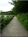 SD7217 : footpath around Turton and Enwistle Reservoir. by liz dawson