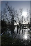 TG2105 : Marston Marshes in flood by Katy Walters