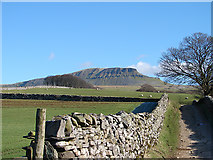 SD8172 : The Pennine Way path to Pen-y-ghent by John Lucas