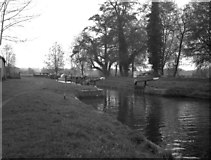 TQ0155 : Worsfold Gates, River Wey, from below by Dr Neil Clifton