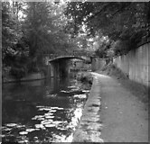 ST7565 : Sydney Gardens No 2 footbridge, Kennet and Avon Canal by Dr Neil Clifton
