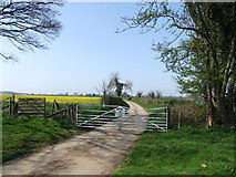 TF3064 : Gated Country Road, Claxby Pluckacre by Dave Hitchborne