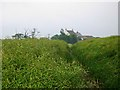 NZ3221 : Hauxley Farm by Graham Scarborough