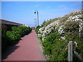 SD1868 : Channelside Walk by Rosalind Mitchell