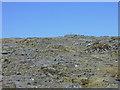 NH0472 : Plateau below Beinn Tarsuinn by Nigel Brown