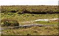 G4422 : Peat bog and pool by Liz McCabe