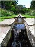 SX9050 : The Rill Garden at Coleton Fishacre by Gordon Brown