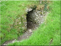 O0273 : Entrance to North Passage Dowth Megalithic Tomb by jai