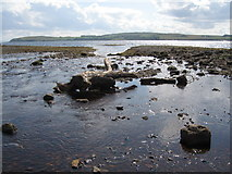 NS2059 : Gogo Water, Largs by wfmillar