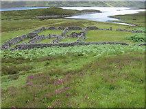 NN6665 : Enclosures by the head of Loch Errochty by Chris Wimbush
