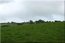 SX0149 : Towan Farm by mike hancock
