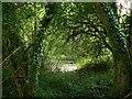SU0781 : Wootton Bassett Mud Springs (1) by Brian Robert Marshall