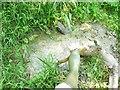 SU0781 : Wootton Bassett Mud Springs (5) by Brian Robert Marshall