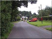 SU0017 : Walking the dogs in Dean Lane by Maigheach-gheal
