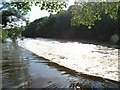 N9272 : Boyne Weir at Dollardstown by JP